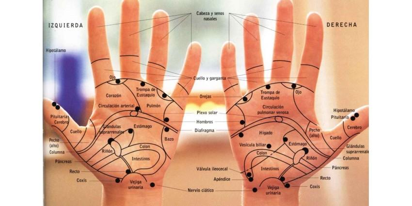 Si puede ser las hernias en el departamento de pecho de la columna vertebral
